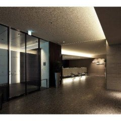 Отель Via Inn Higashi Ginza спа