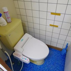 Отель Hakuba Ski Kan Хакуба ванная