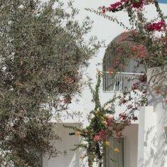 Отель Seabel Rym Beach Djerba Тунис, Мидун - отзывы, цены и фото номеров - забронировать отель Seabel Rym Beach Djerba онлайн фото 2