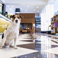 Hotel Lilla Roberts с домашними животными