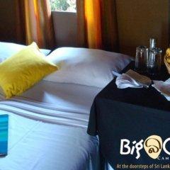Отель Big Game Camp Yala Шри-Ланка, Катарагама - отзывы, цены и фото номеров - забронировать отель Big Game Camp Yala онлайн в номере