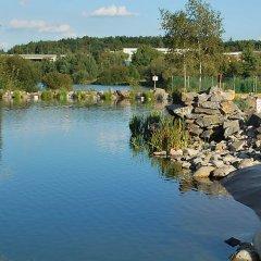 Отель U jezera Чехия, Пльзень - отзывы, цены и фото номеров - забронировать отель U jezera онлайн приотельная территория фото 2