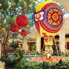Отель Wynn Las Vegas США, Лас-Вегас - 1 отзыв об отеле, цены и фото номеров - забронировать отель Wynn Las Vegas онлайн фото 11