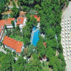 Отель Porfi Beach Hotel Греция, Ситония - 1 отзыв об отеле, цены и фото номеров - забронировать отель Porfi Beach Hotel онлайн пляж фото 2