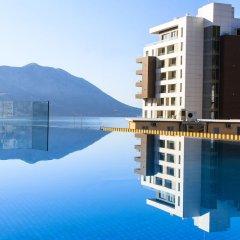 Отель Fagus Черногория, Будва - отзывы, цены и фото номеров - забронировать отель Fagus онлайн бассейн