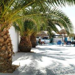 Отель Villa Valvis Греция, Остров Санторини - отзывы, цены и фото номеров - забронировать отель Villa Valvis онлайн фото 2