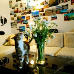 Отель Yunduan Youth Hostel Китай, Шанхай - отзывы, цены и фото номеров - забронировать отель Yunduan Youth Hostel онлайн интерьер отеля фото 3