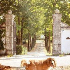 Отель Relais Villa Gozzi B&B Италия, Лимена - отзывы, цены и фото номеров - забронировать отель Relais Villa Gozzi B&B онлайн фото 13