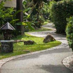 Отель Nora Beach Resort & Spa фото 16