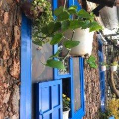 Отель Dalat Coffee House Homestay Далат фото 8