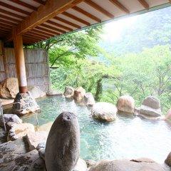 Отель New Ohruri Никко бассейн фото 2
