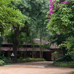 Отель Sigiriya Village фото 15
