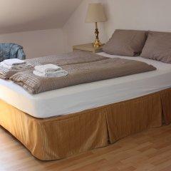 Отель Villa De Baron Германия, Дрезден - отзывы, цены и фото номеров - забронировать отель Villa De Baron онлайн комната для гостей фото 3