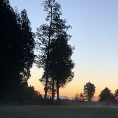 Отель Lake Brunner Accommodation and Golf Course фото 2