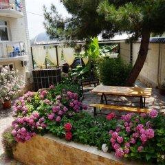 Гостиница Guest house Viktoriya в Сочи 1 отзыв об отеле, цены и фото номеров - забронировать гостиницу Guest house Viktoriya онлайн фото 2