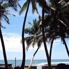 Отель Turtles Rest and Curry Bowl пляж