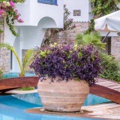 Marphe Hotel Suite & Villas Турция, Датча - отзывы, цены и фото номеров - забронировать отель Marphe Hotel Suite & Villas онлайн фото 8