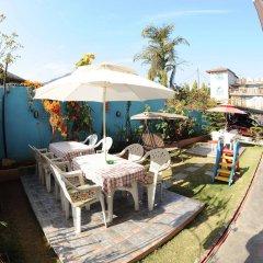 Отель Trekkers Inn Непал, Покхара - отзывы, цены и фото номеров - забронировать отель Trekkers Inn онлайн питание