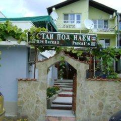 Отель Guest House Paskal бассейн фото 2