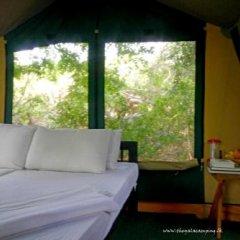 Отель Wild Trails By Amaya комната для гостей фото 4