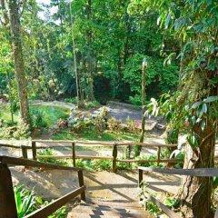 Отель Chachagua Rainforest Ecolodge фото 6