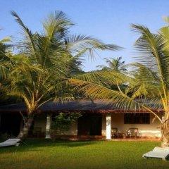Отель Mangrove Villa Шри-Ланка, Бентота - отзывы, цены и фото номеров - забронировать отель Mangrove Villa онлайн фото 15