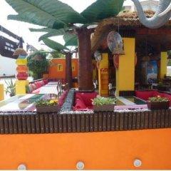 Safari Suit Hotel детские мероприятия фото 2