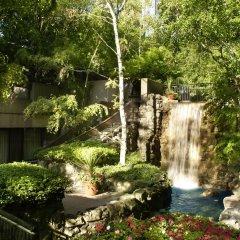 Отель Sheraton Centre Toronto Hotel Канада, Торонто - отзывы, цены и фото номеров - забронировать отель Sheraton Centre Toronto Hotel онлайн фото 5