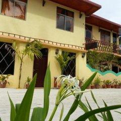 Отель Гостевой Дом Holiday Mathiveri Inn Мальдивы, Мадивару - отзывы, цены и фото номеров - забронировать отель Гостевой Дом Holiday Mathiveri Inn онлайн фото 7