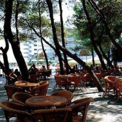 Отель Grand Hotel Berti Италия, Сильви - отзывы, цены и фото номеров - забронировать отель Grand Hotel Berti онлайн развлечения