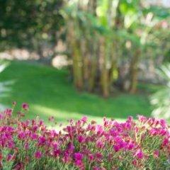 Отель Madeira Panoramico Hotel Португалия, Фуншал - отзывы, цены и фото номеров - забронировать отель Madeira Panoramico Hotel онлайн