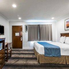 Отель Rodeway Inn & Suites Pacific Coast Highway США, Лос-Анджелес - отзывы, цены и фото номеров - забронировать отель Rodeway Inn & Suites Pacific Coast Highway онлайн комната для гостей фото 3