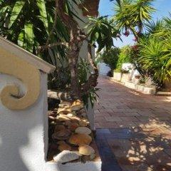Отель Vila Channa Португалия, Албуфейра - отзывы, цены и фото номеров - забронировать отель Vila Channa онлайн фото 9