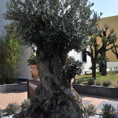 Отель Costa Hotel Италия, Помпеи - отзывы, цены и фото номеров - забронировать отель Costa Hotel онлайн фото 9