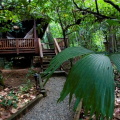 Отель The Lodge at Pico Bonito фото 16