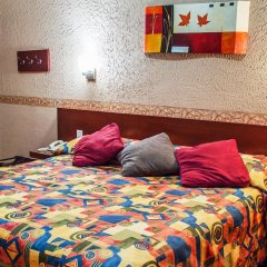 Отель Posada Regis Мексика, Гвадалахара - отзывы, цены и фото номеров - забронировать отель Posada Regis онлайн комната для гостей фото 4
