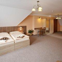 Отель Penzion Eduard Чехия, Франтишкови-Лазне - отзывы, цены и фото номеров - забронировать отель Penzion Eduard онлайн комната для гостей фото 4