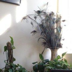 Отель Guesthouse Sonata Болгария, Кюстендил - отзывы, цены и фото номеров - забронировать отель Guesthouse Sonata онлайн фото 2