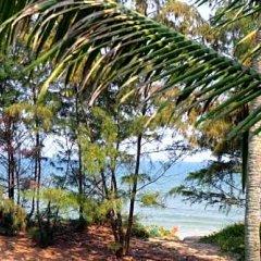 Отель An Bang Beach Hideaway Homestay Вьетнам, Хойан - отзывы, цены и фото номеров - забронировать отель An Bang Beach Hideaway Homestay онлайн фото 16