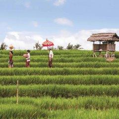 Отель Novotel Bali Nusa Dua фото 5