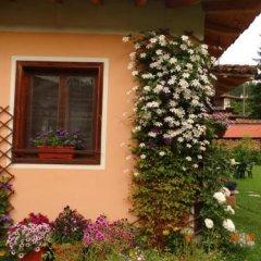 Отель Bobi Guest House Болгария, Копривштица - отзывы, цены и фото номеров - забронировать отель Bobi Guest House онлайн фото 19