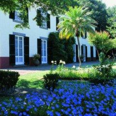 Отель Quinta da Bela Vista Португалия, Фуншал - отзывы, цены и фото номеров - забронировать отель Quinta da Bela Vista онлайн фото 9