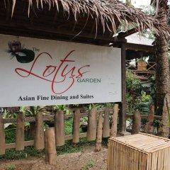 Отель The Lotus Garden Hotel Филиппины, Пуэрто-Принцеса - отзывы, цены и фото номеров - забронировать отель The Lotus Garden Hotel онлайн приотельная территория