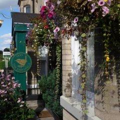 Отель The Farthings Великобритания, Йорк - отзывы, цены и фото номеров - забронировать отель The Farthings онлайн фото 2