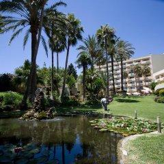 Отель Royal Al-Andalus Испания, Торремолинос - 4 отзыва об отеле, цены и фото номеров - забронировать отель Royal Al-Andalus онлайн