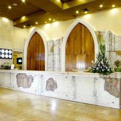 Olive Tree Hotel Израиль, Иерусалим - отзывы, цены и фото номеров - забронировать отель Olive Tree Hotel онлайн фото 7