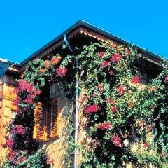 Begonville Pansiyon Турция, Сиде - 1 отзыв об отеле, цены и фото номеров - забронировать отель Begonville Pansiyon онлайн фото 11