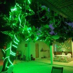 Отель Гостевой Дом Crystal Dhiffushi Мальдивы, Диффуши - отзывы, цены и фото номеров - забронировать отель Гостевой Дом Crystal Dhiffushi онлайн фото 7