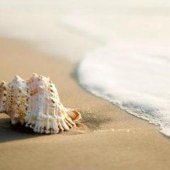 Отель Canasta Италия, Риччоне - отзывы, цены и фото номеров - забронировать отель Canasta онлайн пляж