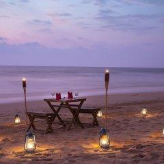 Отель Palm Beach Inn and Sea Shells Cabanas Шри-Ланка, Бентота - отзывы, цены и фото номеров - забронировать отель Palm Beach Inn and Sea Shells Cabanas онлайн фото 13